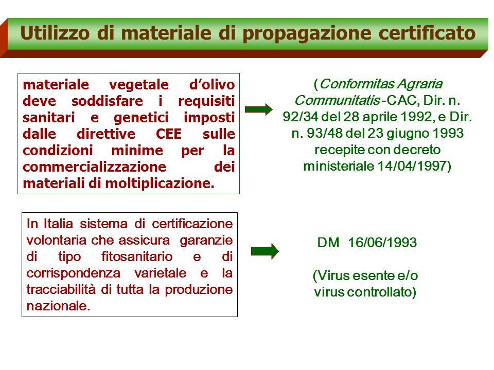 6.Comparazione risultati e definizione protocollo comune (diagnosi multipla) 4.