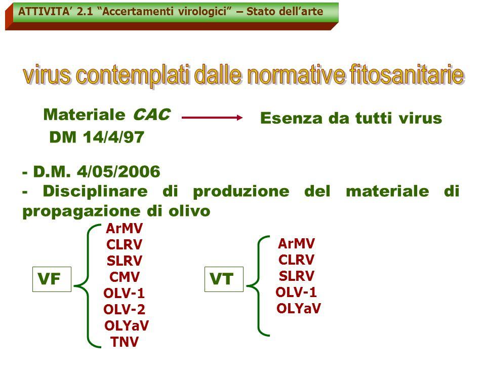 ATTIVITA 2.1 Accertamenti virologici – Stato dellarte Attualmente metodologie diagnostiche molecolari 1)IBRIDAZIONE MOLECOLARE CON RIBOSONDE VIRUS SPECIFICHE (Grieco et al., 2000; Saponari et al.,2001) 4) Analisi del dsRNA 2) RT-PCR con primers virus-specifici (Grieco et al., 2000) 3) ONE-STEP RT-PCR con primers virus-specifici (Faggioli et al., 2005 ) determinazione della virus esenza