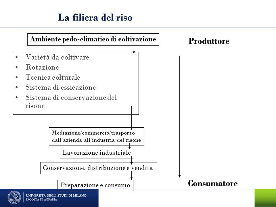La filiera del riso Varietà da coltivare Rotazione Tecnica colturale Sistema di essicazione Sistema di conservazione del risone Ambiente pedo-climatic
