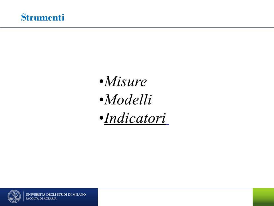 Strumenti Misure Modelli Indicatori
