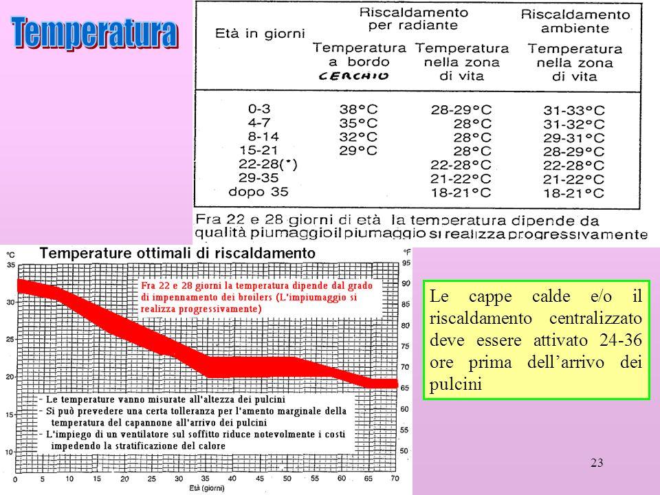 23 Le cappe calde e/o il riscaldamento centralizzato deve essere attivato 24-36 ore prima dellarrivo dei pulcini