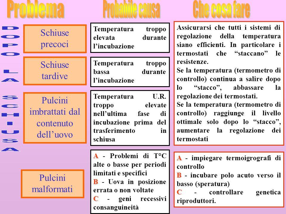 29 Schiuse precoci Assicurarsi che tutti i sistemi di regolazione della temperatura siano efficienti.