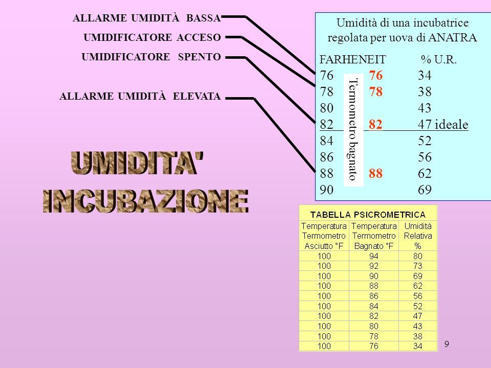 9 Umidità di una incubatrice regolata per uova di ANATRA FARHENEIT % U.R. 767634 78 78 38 8043 8282 47 ideale 84 52 8656 8888 62 90 69 ALLARME UMIDITÀ