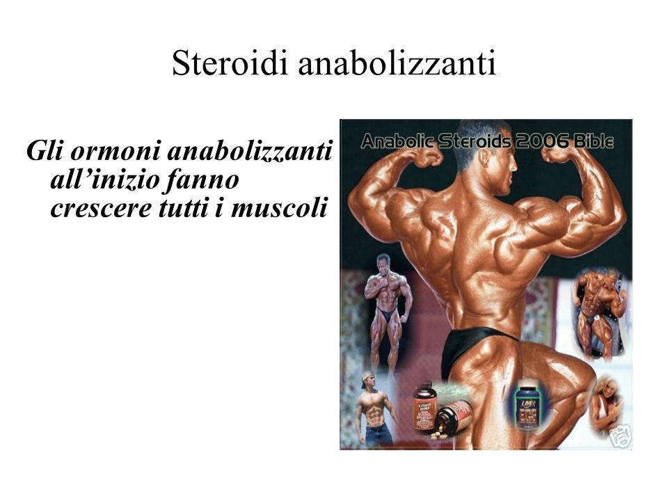 Steroidi anabolizzanti Gli ormoni anabolizzanti allinizio fanno crescere tutti i muscoli