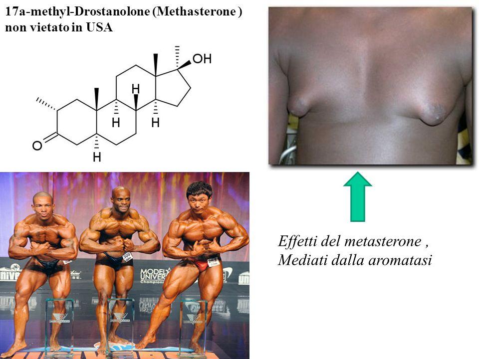 17a-methyl-Drostanolone (Methasterone ) non vietato in USA Effetti del metasterone, Mediati dalla aromatasi