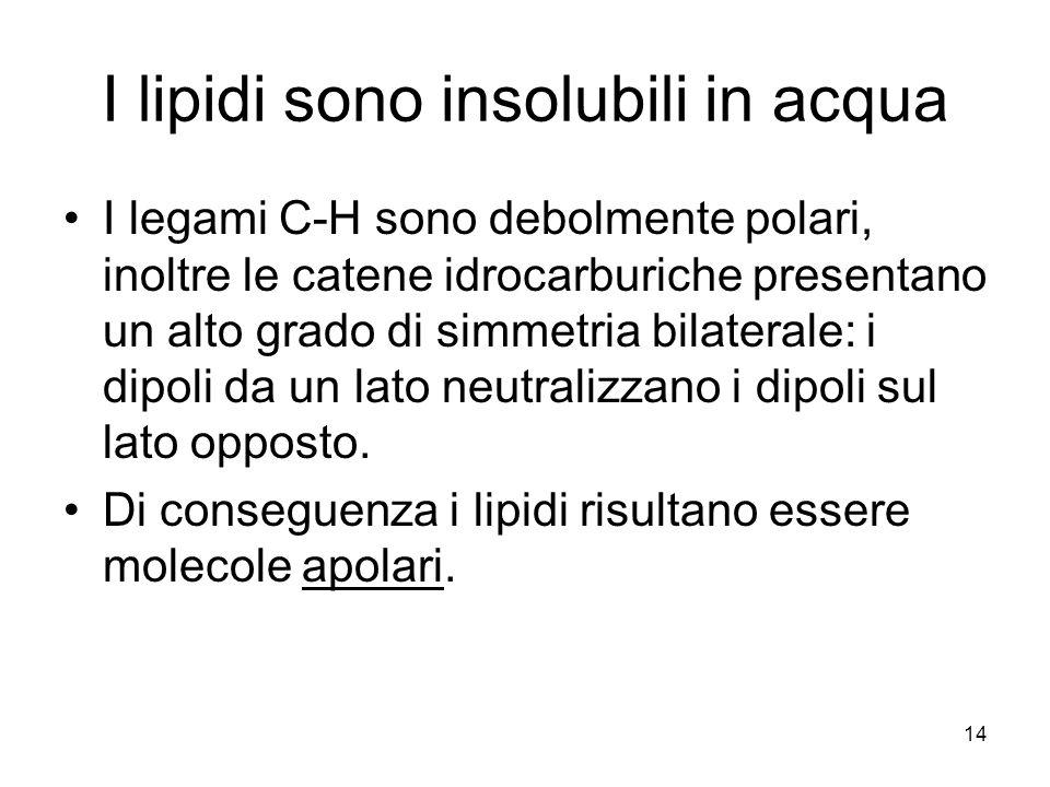 14 I lipidi sono insolubili in acqua I legami C-H sono debolmente polari, inoltre le catene idrocarburiche presentano un alto grado di simmetria bilaterale: i dipoli da un lato neutralizzano i dipoli sul lato opposto.