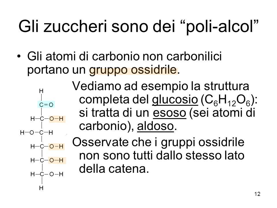 12 Gli zuccheri sono dei poli-alcol Gli atomi di carbonio non carbonilici portano un gruppo ossidrile. Vediamo ad esempio la struttura completa del gl