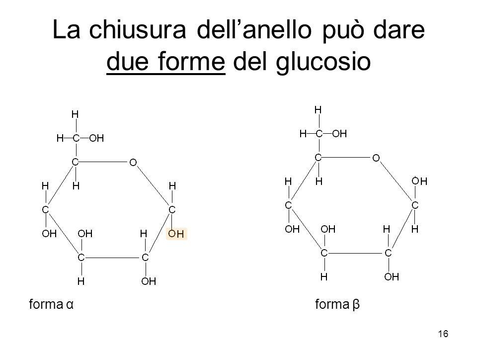 16 La chiusura dellanello può dare due forme del glucosio forma α forma β