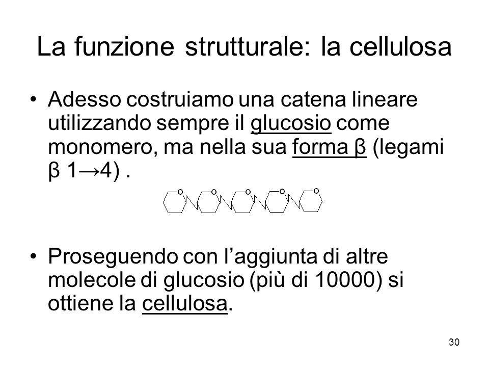 30 La funzione strutturale: la cellulosa Adesso costruiamo una catena lineare utilizzando sempre il glucosio come monomero, ma nella sua forma β (lega