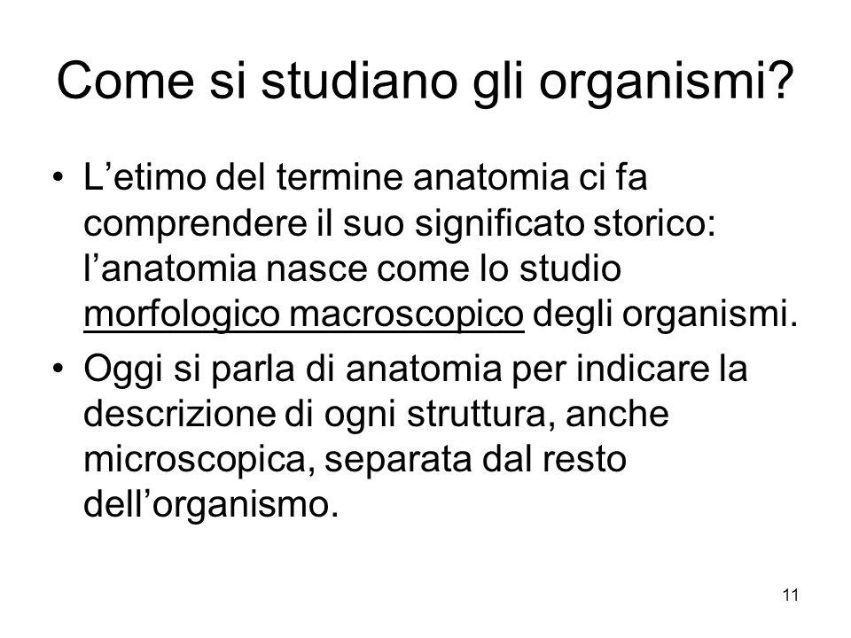 11 Come si studiano gli organismi? Letimo del termine anatomia ci fa comprendere il suo significato storico: lanatomia nasce come lo studio morfologic
