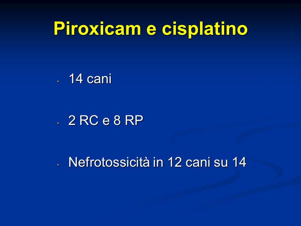 Piroxicam e cisplatino 14 cani 14 cani 2 RC e 8 RP 2 RC e 8 RP Nefrotossicità in 12 cani su 14 Nefrotossicità in 12 cani su 14