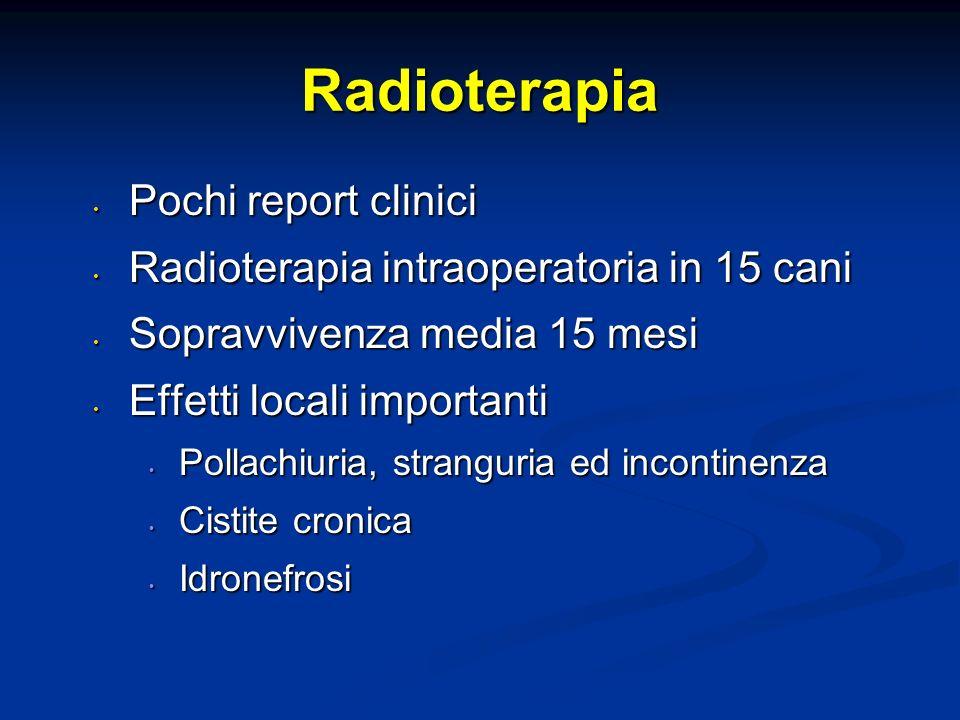Radioterapia Pochi report clinici Pochi report clinici Radioterapia intraoperatoria in 15 cani Radioterapia intraoperatoria in 15 cani Sopravvivenza m