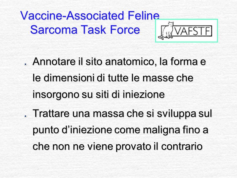Vaccine-Associated Feline Sarcoma Task Force Annotare il sito anatomico, la forma e le dimensioni di tutte le masse che insorgono su siti di iniezione