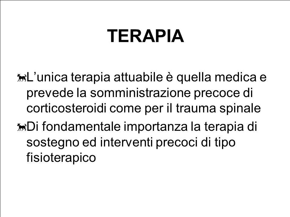TERAPIA Lunica terapia attuabile è quella medica e prevede la somministrazione precoce di corticosteroidi come per il trauma spinale Di fondamentale importanza la terapia di sostegno ed interventi precoci di tipo fisioterapico