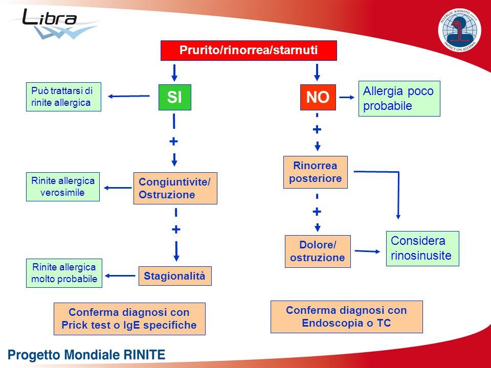 Prurito/rinorrea/starnuti SINO Può trattarsi di rinite allergica Allergia poco probabile + Congiuntivite/ Ostruzione Stagionalità + Rinite allergica v