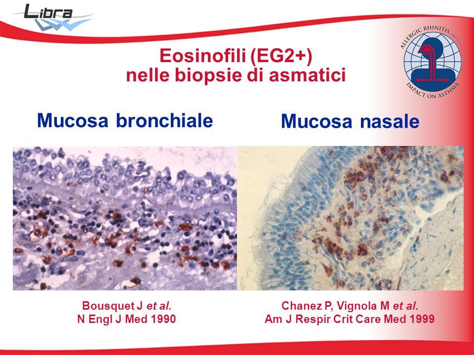 Eosinofili (EG2+) nelle biopsie di asmatici Bousquet J et al. N Engl J Med 1990 Mucosa bronchiale Chanez P, Vignola M et al. Am J Respir Crit Care Med