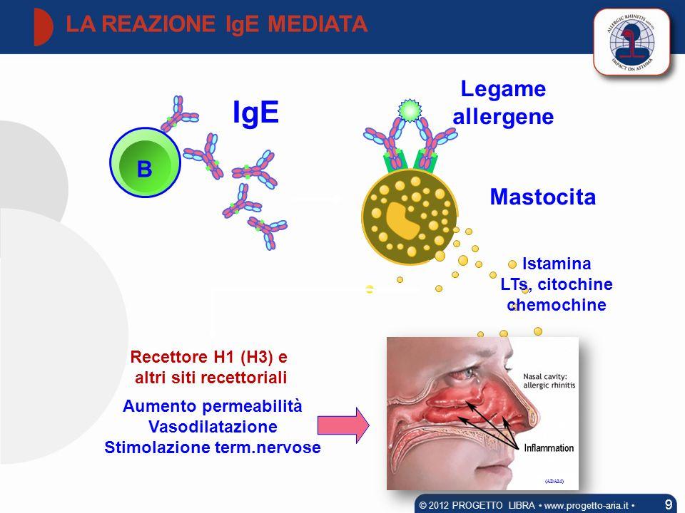 Legame allergene Mastocita B IgE Aumento permeabilità Vasodilatazione Stimolazione term.nervose Recettore H1 (H3) e altri siti recettoriali LA REAZION