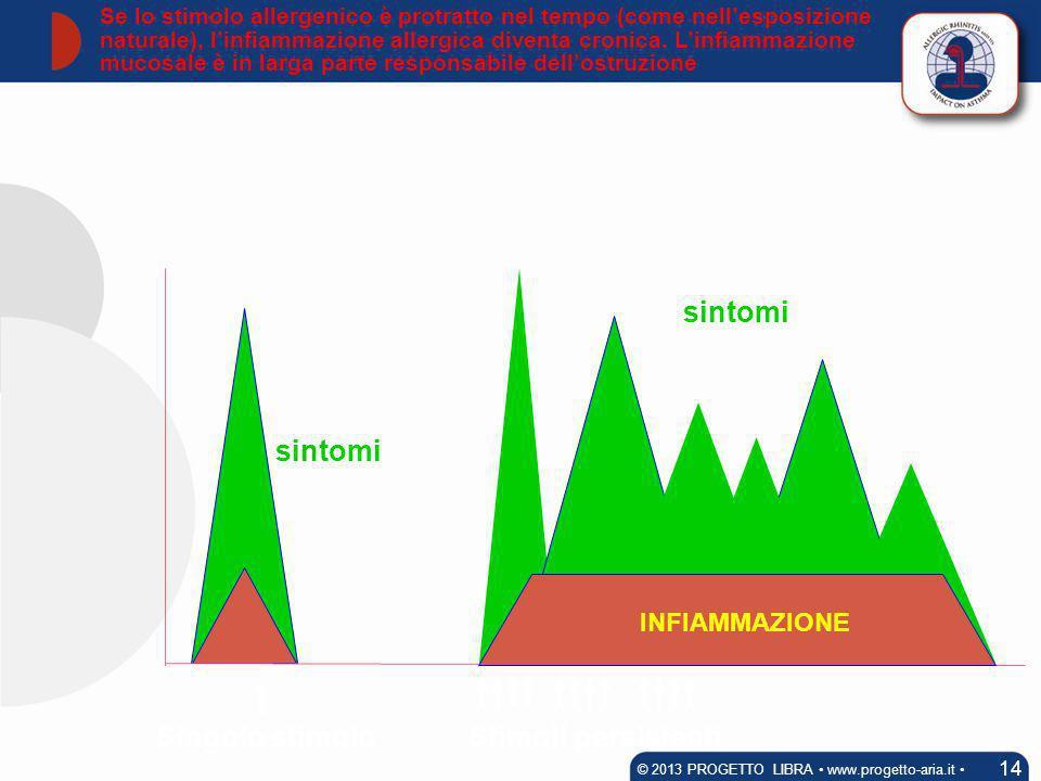 Stimoli persistentiSingolo stimolo sintomi Se lo stimolo allergenico è protratto nel tempo (come nellesposizione naturale), linfiammazione allergica d