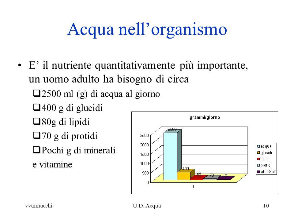 vvannucchiU.D. Acqua10 Acqua nellorganismo E il nutriente quantitativamente più importante, un uomo adulto ha bisogno di circa 2500 ml (g) di acqua al