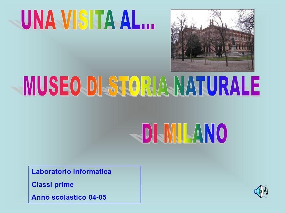 Il Museo di storia naturale si trova in corso Venezia a Milano.