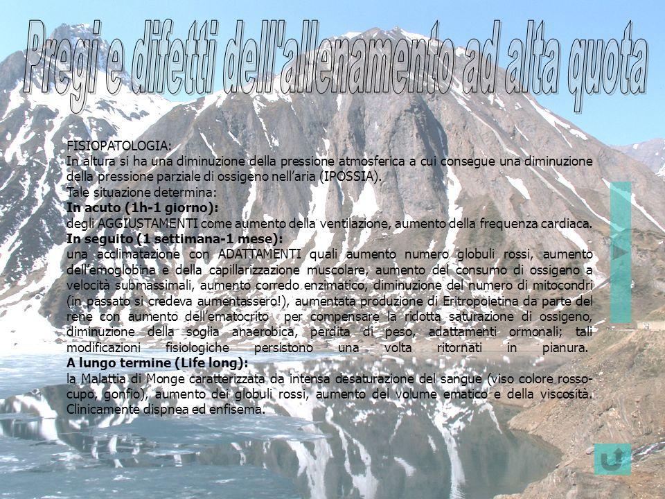 FISIOPATOLOGIA: In altura si ha una diminuzione della pressione atmosferica a cui consegue una diminuzione della pressione parziale di ossigeno nellar
