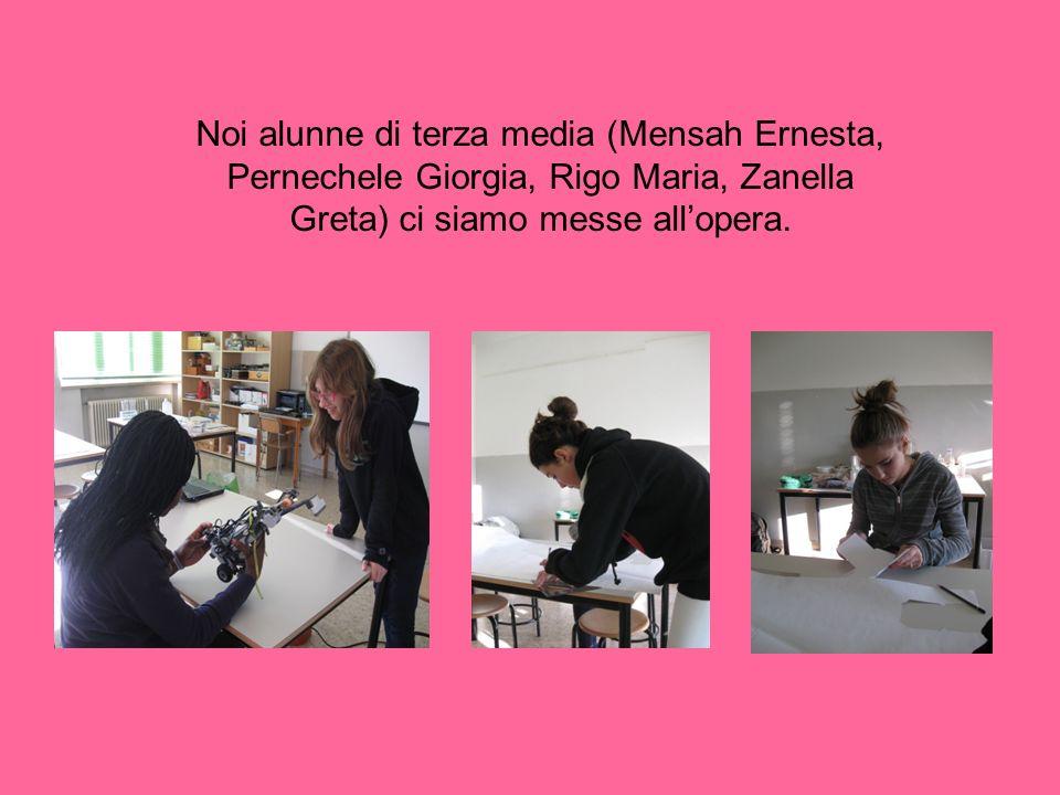 Noi alunne di terza media (Mensah Ernesta, Pernechele Giorgia, Rigo Maria, Zanella Greta) ci siamo messe allopera.