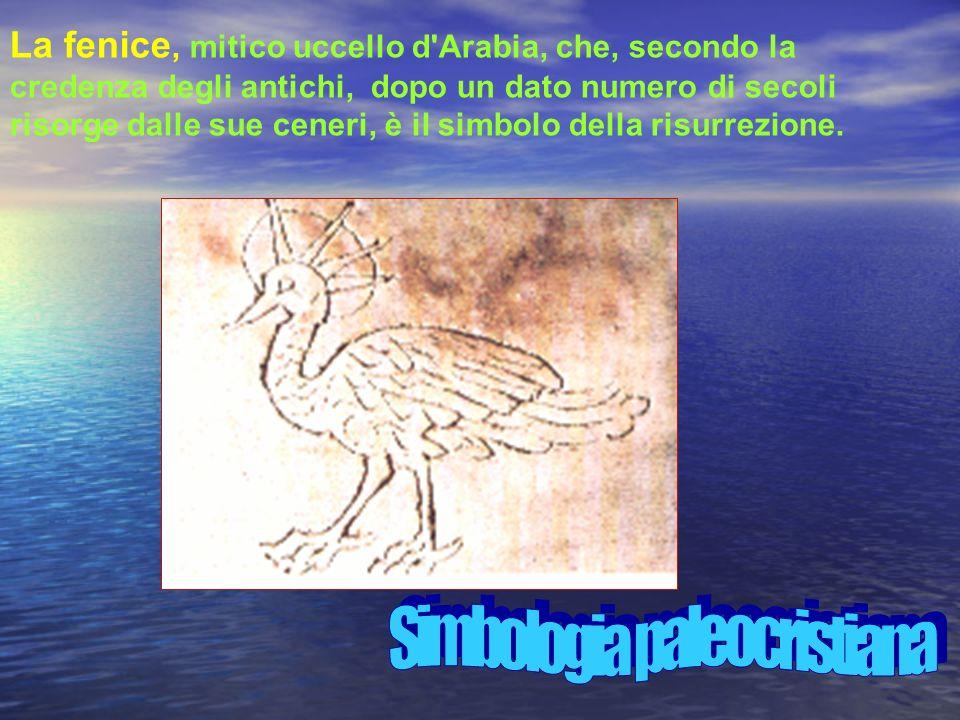 La fenice, mitico uccello d Arabia, che, secondo la credenza degli antichi, dopo un dato numero di secoli risorge dalle sue ceneri, è il simbolo della risurrezione.