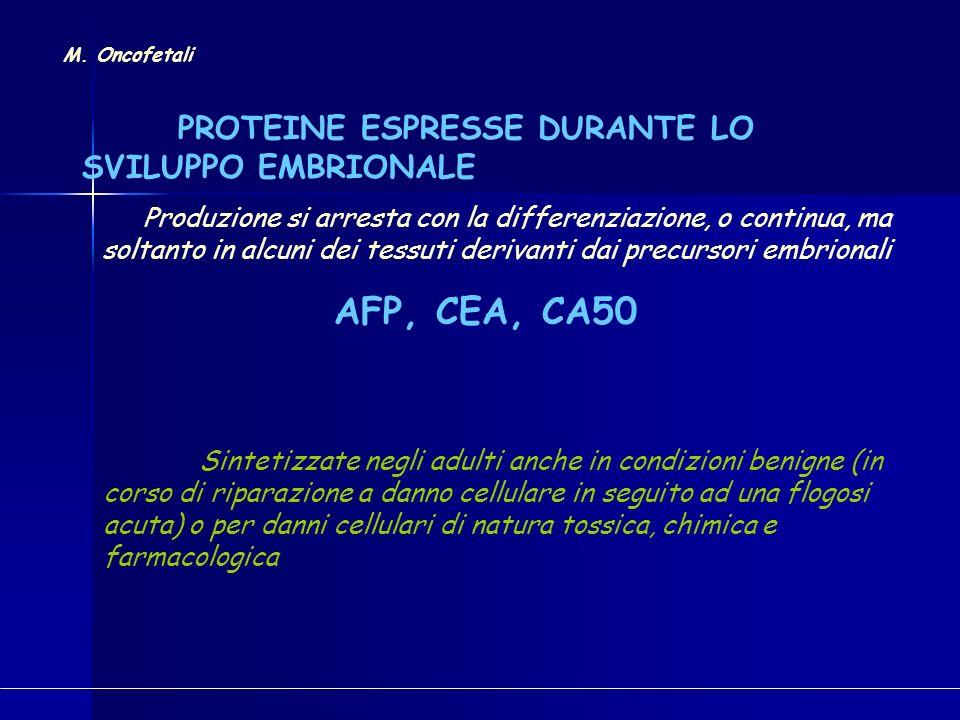 COMPONENTI CELLULARI PRESENTI IN MOLTI O TUTTI I TIPI DI CELLULE CITOCHERATINE: TPA (8, 18, 19), TPS (18), CYFRA 21-1 (19) M.