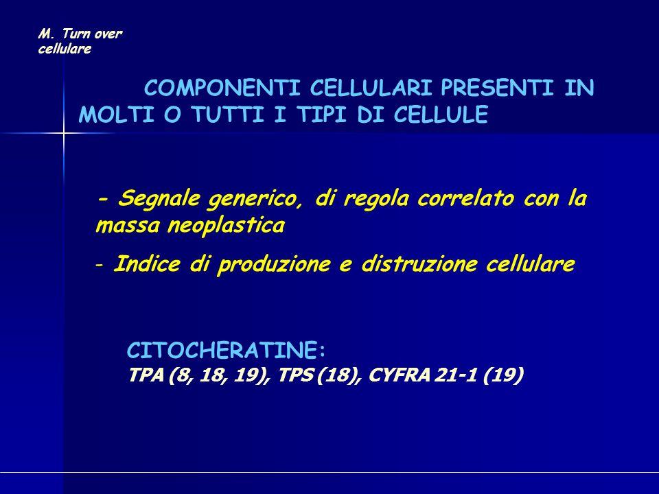 COMPONENTI CELLULARI PRESENTI IN MOLTI O TUTTI I TIPI DI CELLULE CITOCHERATINE: TPA (8, 18, 19), TPS (18), CYFRA 21-1 (19) M. Turn over cellulare - Se