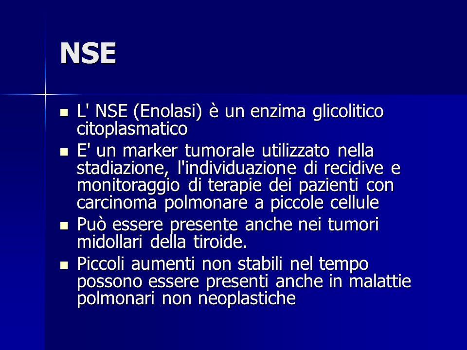 NSE L' NSE (Enolasi) è un enzima glicolitico citoplasmatico L' NSE (Enolasi) è un enzima glicolitico citoplasmatico E' un marker tumorale utilizzato n