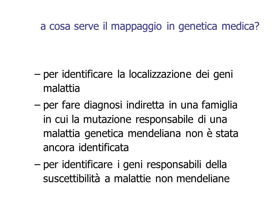 a cosa serve il mappaggio in genetica medica? –per identificare la localizzazione dei geni malattia –per fare diagnosi indiretta in una famiglia in cu