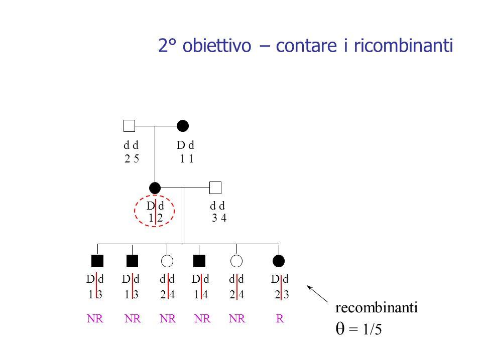 d D d d 2 51 1 23 4 1 3 1 3 2 4 1 4 2 4 2 3 NR NR NR NR NR R recombinanti = 1/5 2° obiettivo – contare i ricombinanti