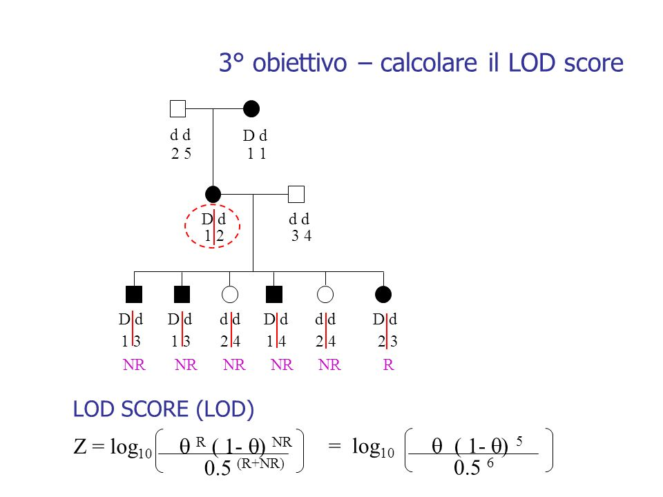 d D d d 2 51 1 23 4 1 3 1 3 2 4 1 4 2 4 2 3 NR NR NR NR NR R Z = log 10 R ( 1- ) NR 0.5 (R+NR) LOD SCORE (LOD) = log 10 ( 1- ) 5 0.5 6 3° obiettivo –