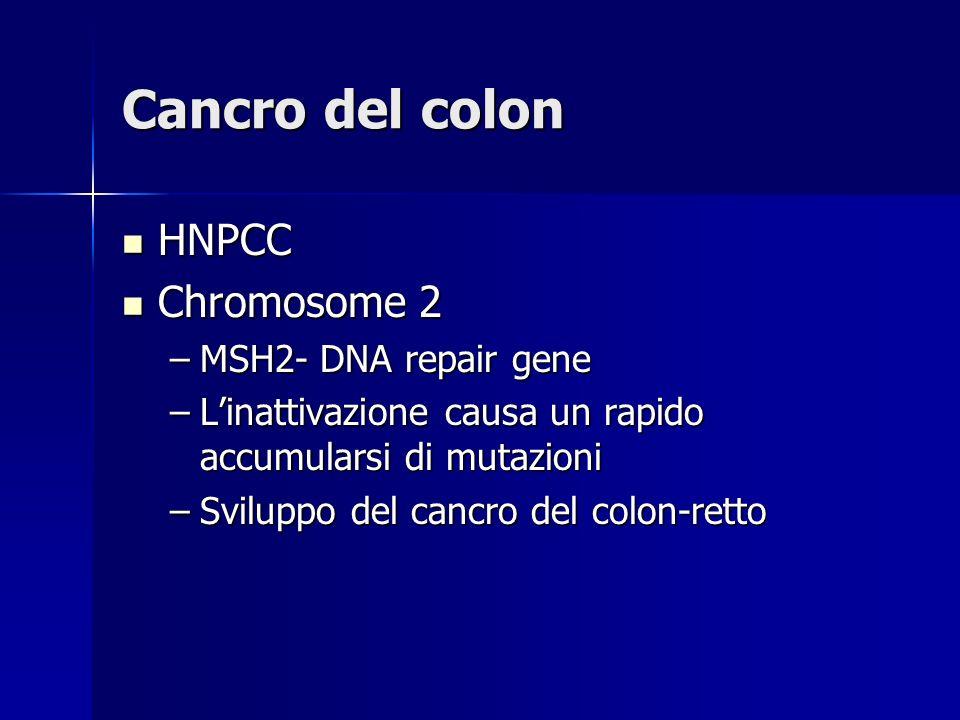 Cancro del colon HNPCC HNPCC Chromosome 2 Chromosome 2 –MSH2- DNA repair gene –Linattivazione causa un rapido accumularsi di mutazioni –Sviluppo del c