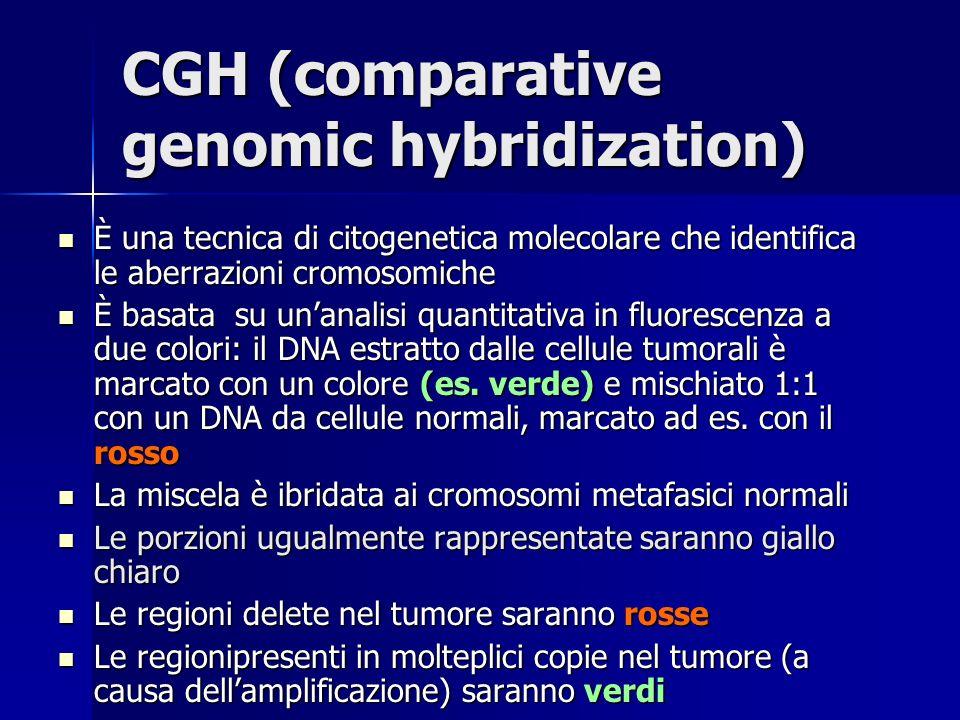 CGH (comparative genomic hybridization) È una tecnica di citogenetica molecolare che identifica le aberrazioni cromosomiche È una tecnica di citogenet