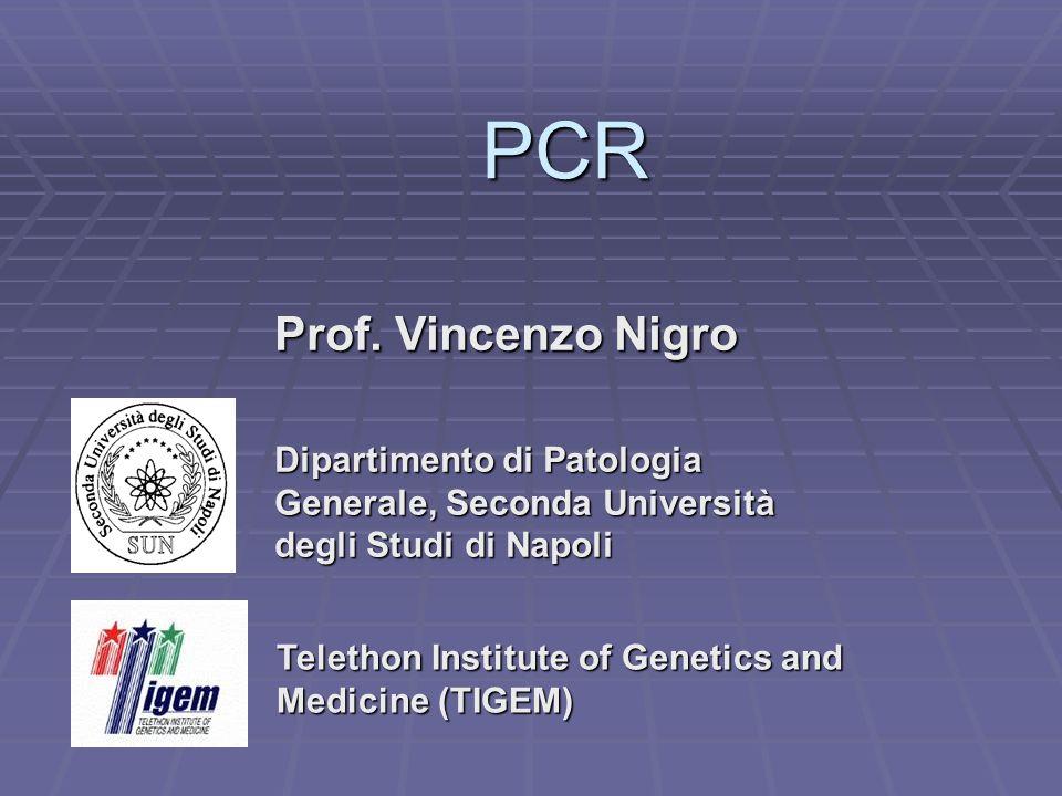 PCR Prof. Vincenzo Nigro Dipartimento di Patologia Generale, Seconda Università degli Studi di Napoli Telethon Institute of Genetics and Medicine (TIG