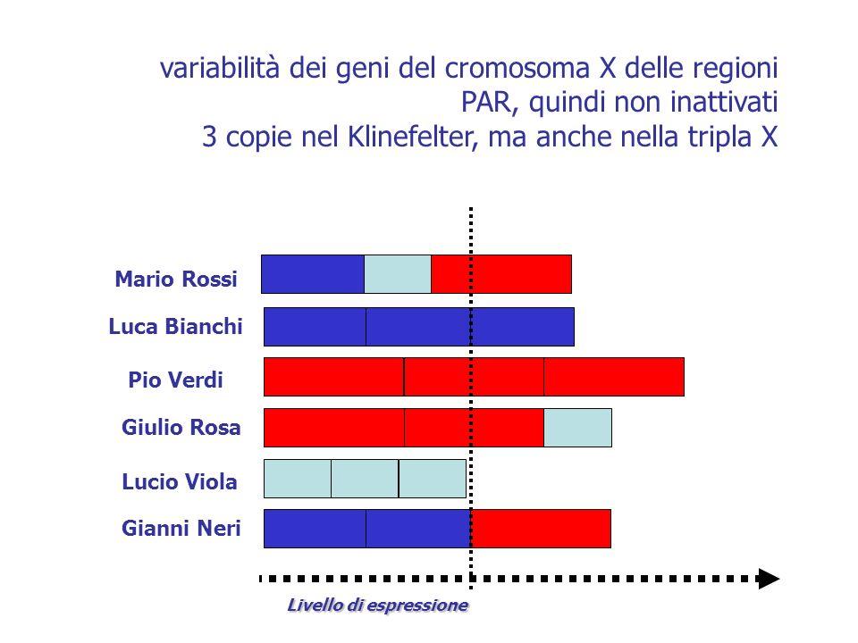 Livello di espressione variabilità dei geni del cromosoma X delle regioni PAR, quindi non inattivati 3 copie nel Klinefelter, ma anche nella tripla X