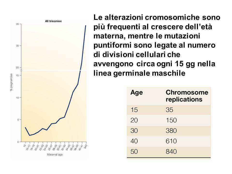 Le alterazioni cromosomiche sono più frequenti al crescere delletà materna, mentre le mutazioni puntiformi sono legate al numero di divisioni cellular