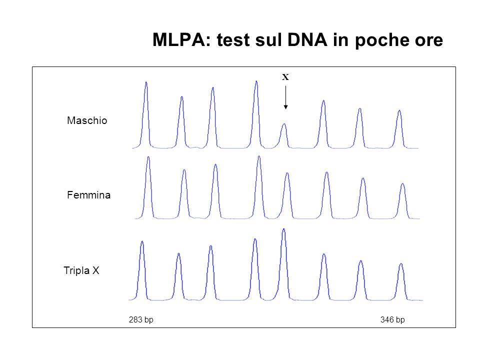 Tripla X Femmina Maschio 283 bp 346 bp MLPA: test sul DNA in poche ore X