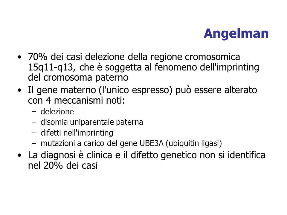 Angelman 70% dei casi delezione della regione cromosomica 15q11-q13, che è soggetta al fenomeno dell imprinting del cromosoma paterno Il gene materno (l unico espresso) può essere alterato con 4 meccanismi noti: –delezione –disomia uniparentale paterna –difetti nell imprinting –mutazioni a carico del gene UBE3A (ubiquitin ligasi) La diagnosi è clinica e il difetto genetico non si identifica nel 20% dei casi