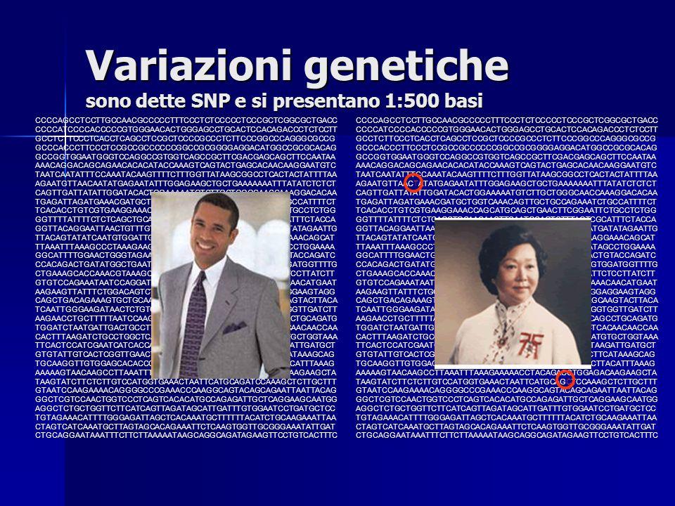 Variazioni genetiche sono dette SNP e si presentano 1:500 basi CCCCAGCCTCCTTGCCAACGCCCCCTTTCCCTCTCCCCCTCCCGCTCGGCGCTGACC CCCCATCCCCACCCCCGTGGGAACACTGG