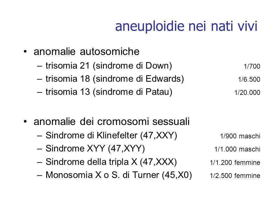 aneuploidie nei nati vivi anomalie autosomiche –trisomia 21 (sindrome di Down) 1/700 –trisomia 18 (sindrome di Edwards) 1/6.500 –trisomia 13 (sindrome