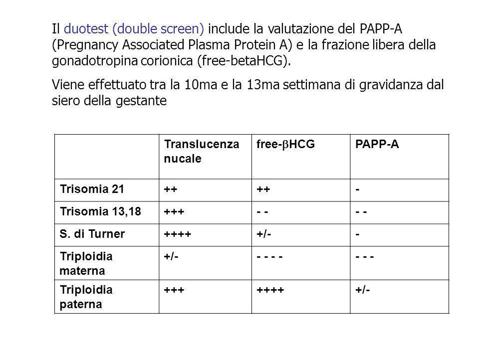 Translucenza nucale free- HCG PAPP-A Trisomia 21++ - Trisomia 13,18+++- S. di Turner+++++/-- Triploidia materna +/-- - - - - Triploidia paterna ++++++