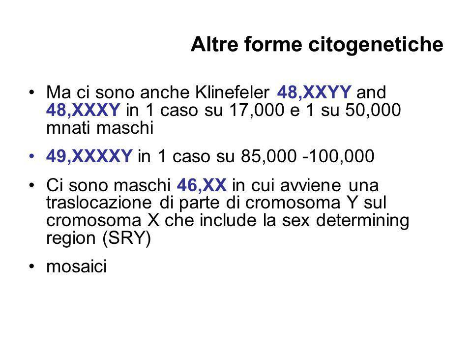Altre forme citogenetiche Ma ci sono anche Klinefeler 48,XXYY and 48,XXXY in 1 caso su 17,000 e 1 su 50,000 mnati maschi 49,XXXXY in 1 caso su 85,000