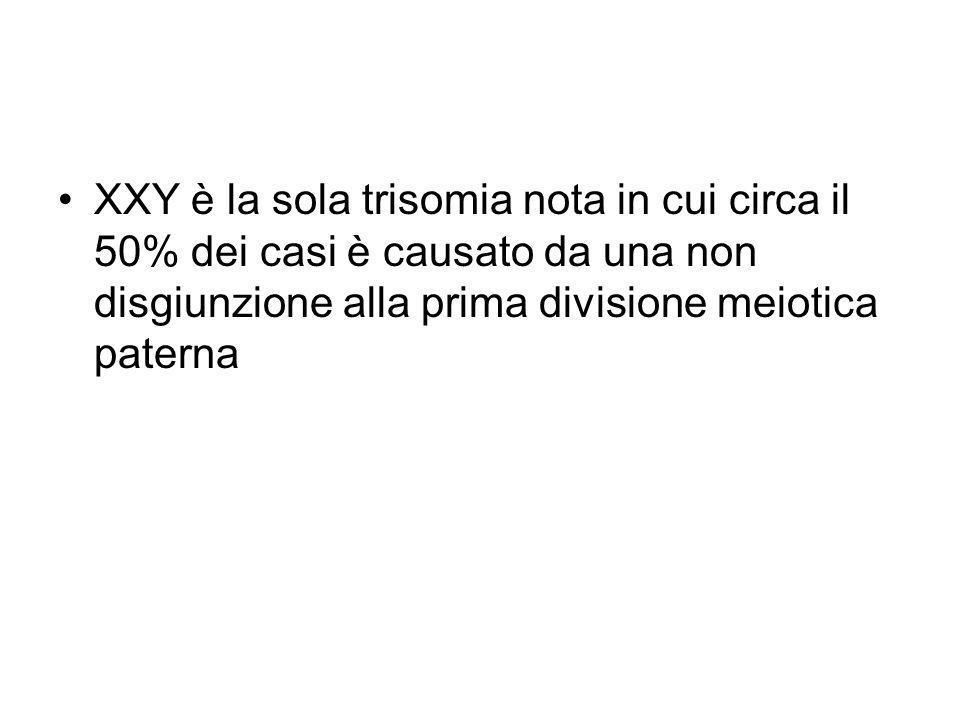XXY è la sola trisomia nota in cui circa il 50% dei casi è causato da una non disgiunzione alla prima divisione meiotica paterna