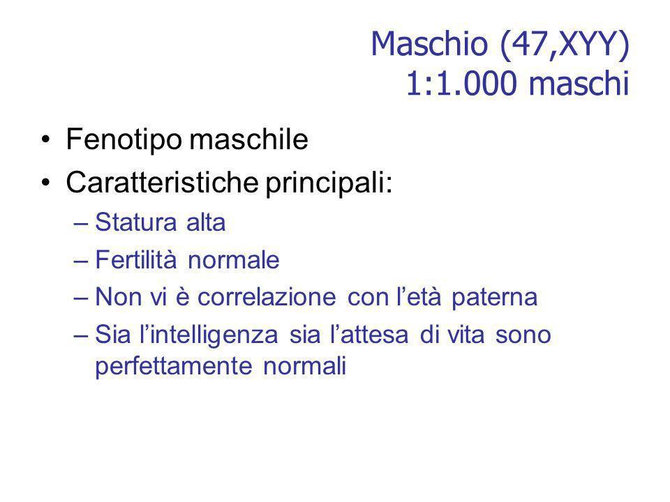 Maschio (47,XYY) 1:1.000 maschi Fenotipo maschile Caratteristiche principali: –Statura alta –Fertilità normale –Non vi è correlazione con letà paterna