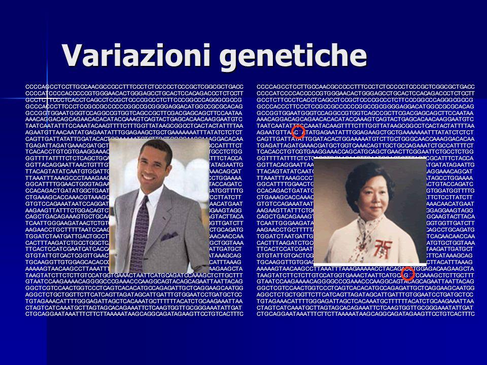 Variazioni genetiche CCCCAGCCTCCTTGCCAACGCCCCCTTTCCCTCTCCCCCTCCCGCTCGGCGCTGACC CCCCATCCCCACCCCCGTGGGAACACTGGGAGCCTGCACTCCACAGACCCTCTCCTT GCCTCTTCCCTCA