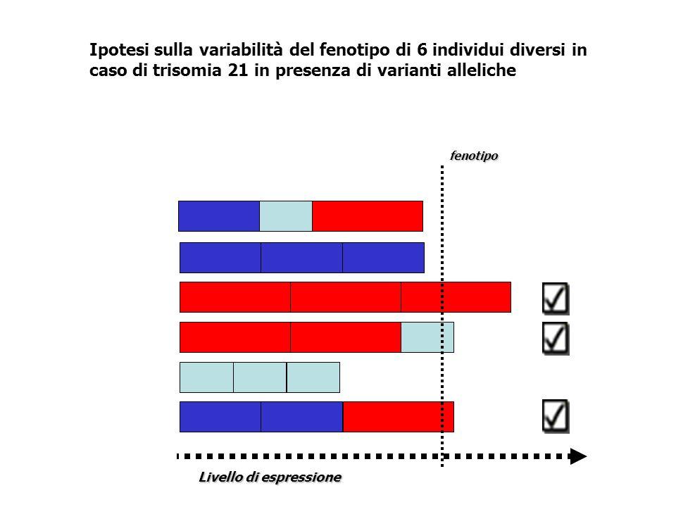 fenotipo Livello di espressione Ipotesi sulla variabilità del fenotipo di 6 individui diversi in caso di trisomia 21 in presenza di varianti alleliche