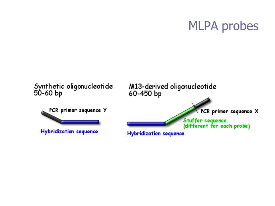 MLPA probes