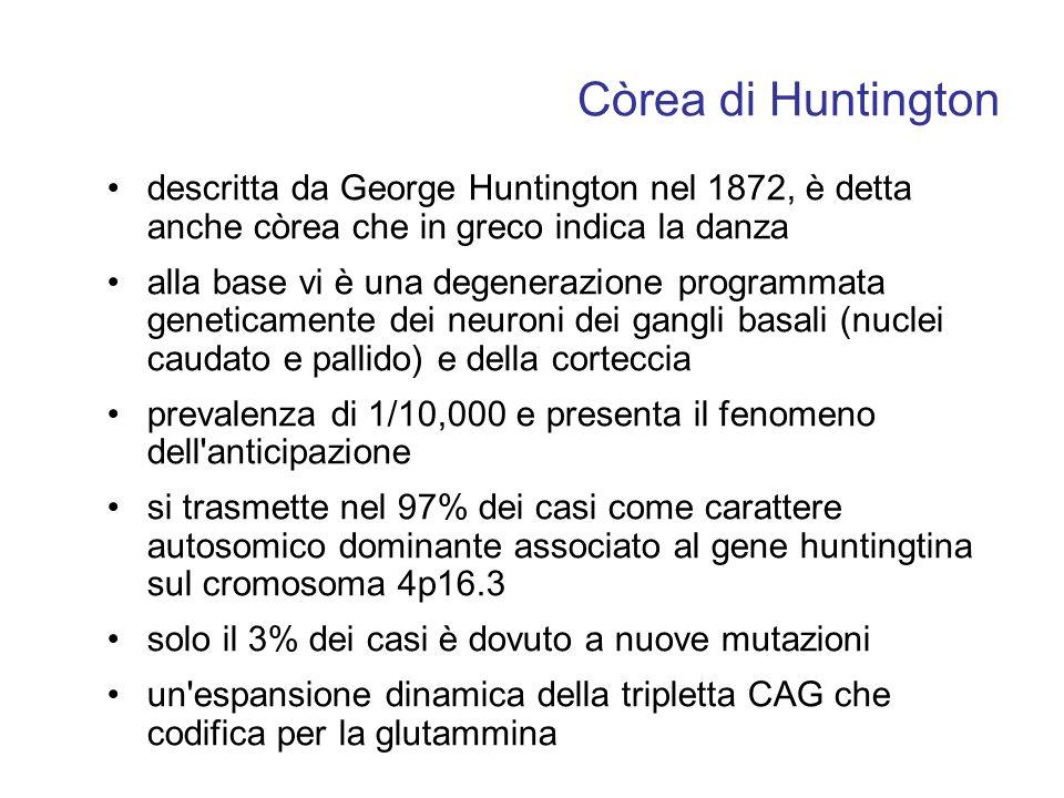 Còrea di Huntington descritta da George Huntington nel 1872, è detta anche còrea che in greco indica la danza alla base vi è una degenerazione program